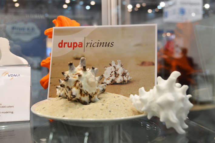 Drupa/Ricinus: Infotafel / Karte
